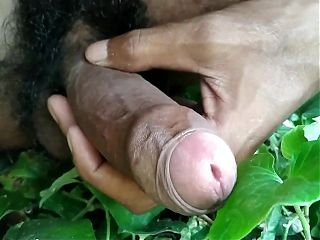 India masturbation in forest and cumshot on leaf.mp4